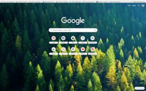 chrome nordic forest theme screenshot