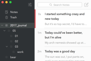 bear notes nested hashtag search screenshot